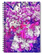 Waxleaf Privet Blooms On A Sunny Day With Magenta Hue Spiral Notebook