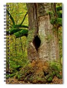 We Are Here Since 1000 Years 1 Spiral Notebook