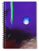 We Two Cats Spiral Notebook