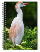Wearing Spring Colors Spiral Notebook