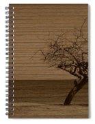 Weatherd Beach Tree Spiral Notebook