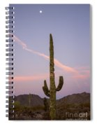 Weathered Cactus Spiral Notebook