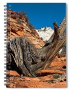 Weathered Check Spiral Notebook