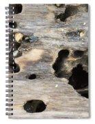 Weathered Driftwood Spiral Notebook