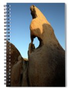 Weathered Rock Spiral Notebook