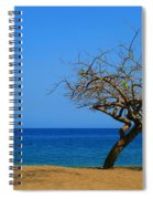 Weathered Tree Spiral Notebook