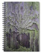 Weathered Wood And Lichen Abstract Spiral Notebook