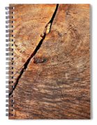 Weathered Wood On Old Tree Spiral Notebook