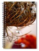 Weavers Tune... Spiral Notebook