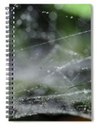 Web After Rain 2 Spiral Notebook