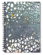Web Spiral Notebook