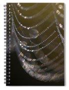 Web Sparkle Spiral Notebook