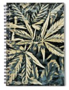 Weed Abstracts Four Spiral Notebook