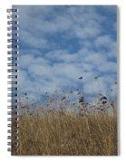 Weeds And Dappled Sky Spiral Notebook