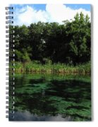 Weeki Wachee River Spiral Notebook