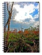 Weeks Bay Swamp Spiral Notebook