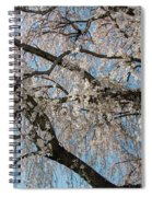 Weeping Cherry In Spring Spiral Notebook
