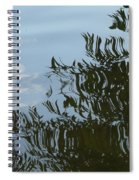 Weeping Willow Reflection Spiral Notebook