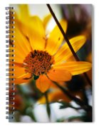 Welcome... Spiral Notebook