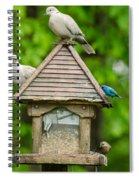 Welcome To My Bird Feeder Spiral Notebook