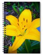 Welcoming Lily Spiral Notebook