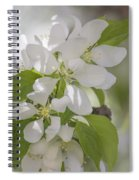 Welcoming Spring - 2  Spiral Notebook