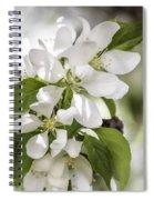 Welcoming Spring Spiral Notebook