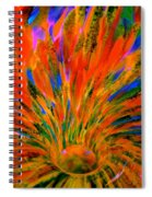 Well Of Colors Spiral Notebook