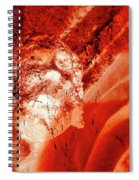 Wells Cathedral Gargoyles Color Negative C Spiral Notebook