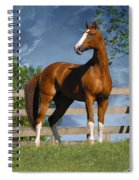 Welt Adel Spiral Notebook