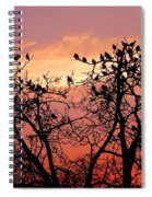 Wente Road Sunset Spiral Notebook