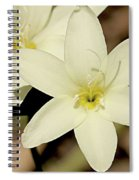 West Australian Wildflowers - Orchid 2 Spiral Notebook