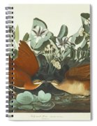 West Dove Spiral Notebook
