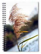 West Wind Today Spiral Notebook