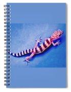 Western Banded Gecko Spiral Notebook