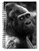 Western Lowland Gorilla Closeup Spiral Notebook