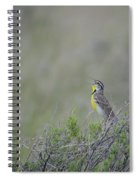 Western Meadowlark Morning Spiral Notebook