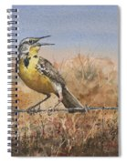 Western Meadowlark Spiral Notebook