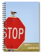 Western Meadowlark Singing On Top Of A Stop Sign Spiral Notebook