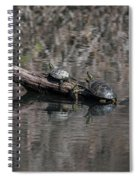 Western Painted Turtles On A Log Spiral Notebook