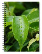 Wet Bushes Spiral Notebook