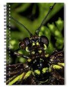 Wet Butterfly Spiral Notebook