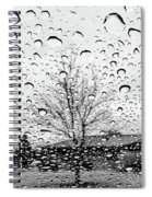 Wet Car Window B Spiral Notebook