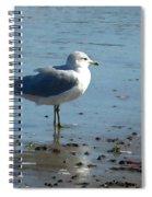 Wet Feet Spiral Notebook