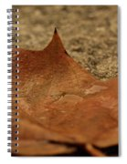 Wet Leaf Spiral Notebook