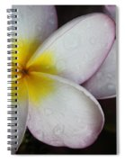 Wet Petals Spiral Notebook