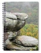 Wet Sandstone Spiral Notebook