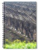 Wet Vineyard Spiral Notebook