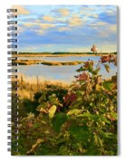 Wetlands In Cape Breton Spiral Notebook
