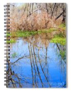Wetlands Viewing Area In Chatfield State Park Spiral Notebook